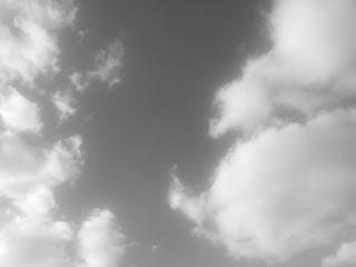 20121111_131658.jpg